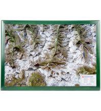 Reliefkarten Matterhorn mit Rahmen 1:100 000 georelief GbR