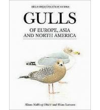 Naturführer Gulls of Europe, Asia and North America A & C Black Publishers Ltd.
