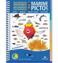 Tauchen und Schnorcheln Pictolife Marine - Makaronesie Pictolife