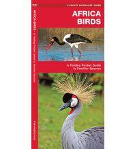 Naturführer A folding Pocket Guide to familiar Species - Africa Birds Waterford press