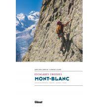 Florence Lelong, Jean-Louis Laroche - Mont-Blanc: Escalades choisies Glenat Beaux Livres