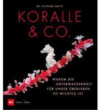 Tauchen und Schnorcheln Koralle & Co. Delius Klasing Verlag GmbH