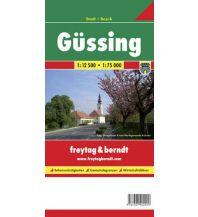 f&b Stadtpläne Güssing, Stadtplan 1:12.500 Freytag-Berndt und ARTARIA