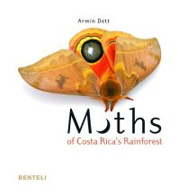 Naturführer Moths of Costa Rica's Rainforest Niggli Verlag