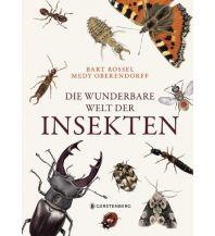 Die wunderbare Welt der Insekten Gerstenberg Verlag