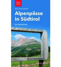 Alpenpässe in Südtirol Folio Verlag