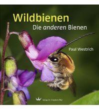 Naturführer Wildbienen Dr. Friedrich Pfeil Verlag
