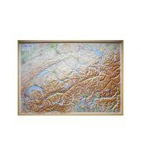 Geografie Global Map Reliefkarte Schweiz/Svizzera/Schweiz 1:300.000 Global Map